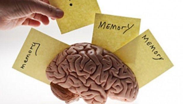Jantung Berpengaruh Terhadap Memori Otak