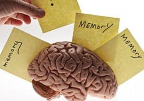 jantung-berpengaruh-terhadap-memori-otak-8928